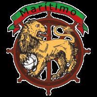 CSM - Prancheta 2 cópia - logos